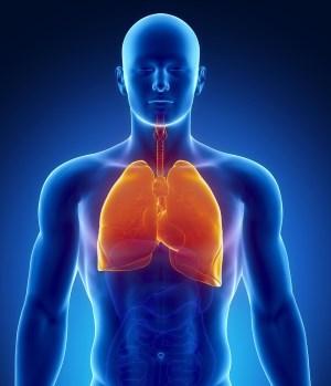 Ночной кашель у взрослого: причины и методы борьбы