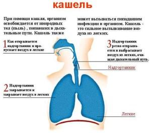 Средство от сухого кашля для детей