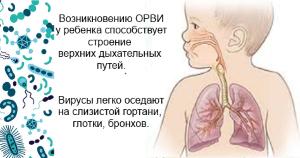 Лечение кашля без температуры у детей