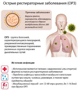 Лечение кашля при беременности в 3 триместре